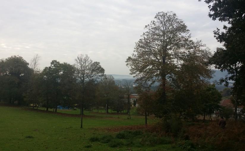 Villa verde 2400 m²