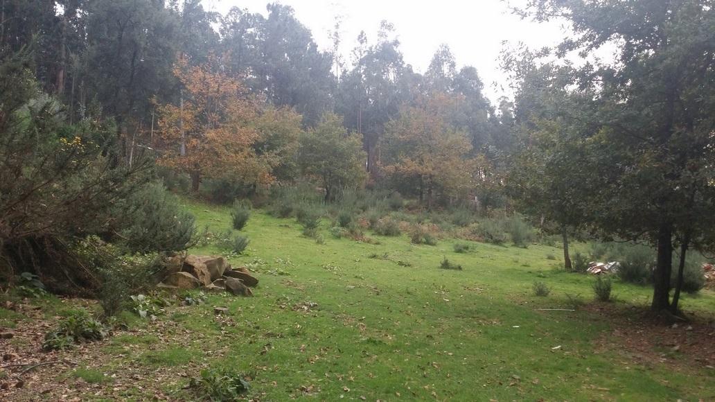 vila-verde-marrancos-1500m-29000euo